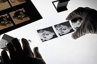 Andreas Bohnenstengel Negative 01.jpg