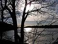 Anglezarke Reservoir - geograph.org.uk - 320540.jpg