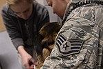 Animal house, Saber Nations' Veterinary Clinic 140225-F-YU668-018.jpg