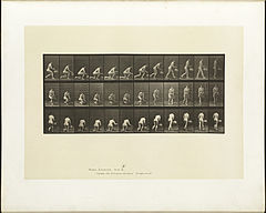 Animal locomotion. Plate 251 (Boston Public Library).jpg