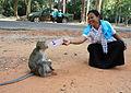 Ankor Wat complex, Cambodia (4331000901).jpg