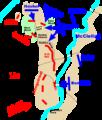 Antietam Battle Map.png