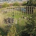 Antoon Versteegde Colosseum Rotterdam.jpg