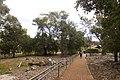 Apsley NSW 2820, Australia - panoramio (41).jpg