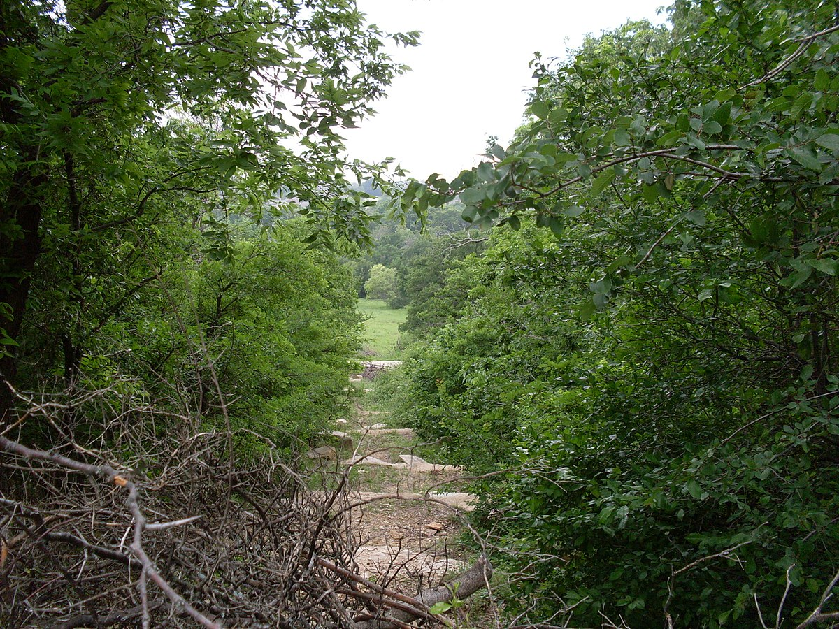 How Many Miles From >> Arbor Hills Nature Preserve - Wikipedia