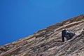 Argentina - Frey climbing 47 - climbing la Vieja (6816042930).jpg