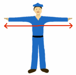 Arm span - Image: Arm span 01