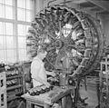 Attilan kenkätehtaan pohjaamo vuonna 1952. Kuva Jussi Kangas, Vapriikin kuva-arkisto. (16434750455).jpg