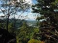 Ausblick von der Elsbethütte am Rockertfelsen (Gernsbach) 1.jpg