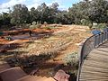 Australian National Botanic Garden Red Centre Garden 2.jpg