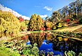 Autumn reflections over Mt Lofty Botanical Gardens.jpg