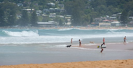 Avoca Beach, New South Wales- facing south towards Surf Club