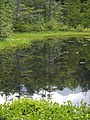 Azumi, Matsumoto, Nagano Prefecture 390-1520, Japan - panoramio (32).jpg