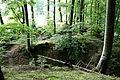 BL - Bodman - Hofgut Bodenwald - Wallburg 08 ies.jpg
