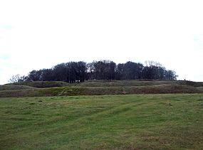 Northern ramparts of Badbury Rings