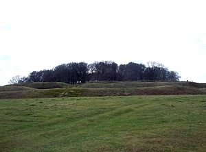 Badbury Rings - Badbury Rings viewed from the northeast