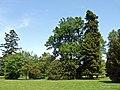 Baden Sightseeing-Tour, Parkanlage Schloß Favorite bei Förch - Rastatt - panoramio (5).jpg