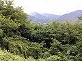 Bagni di Lucca, Province of Lucca, Italy - panoramio - jim walton (9).jpg