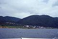 Baikal (4388247924).jpg