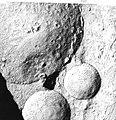 Bakers yeast cytoplasm-nucleus.jpg