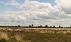 Balloërveld, natuurgebied in Drenthe 022.jpg