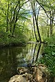 Bamboo Brook, Merchiston Farm, Chester Township, NJ - looking west.jpg