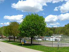 Bancroft Community Park in the spring.