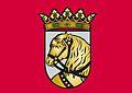 Bandera Ayuntamiento de Cuéllar.jpg