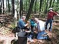 Banding bald eaglet at Eastern Neck National Wildlife Refuge (34252285672).jpg