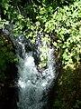 Banias River05.jpg