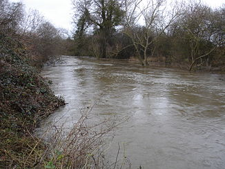 Der River Wey bei Pyrford in Surrey
