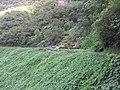 Barrage de Takamaka 2 - panoramio.jpg