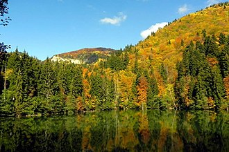 Bateti Lake - Image: Bateti lake in fall 2