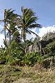 Bathsheba, Barbados 41.jpg