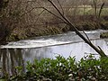 Beasley Weir on the River Barle - geograph.org.uk - 748660.jpg