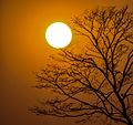 Beautiful sun set seen by nabinchowk ilam.jpg