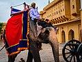 Beauty of the Amber fort and Hawa Mahal!.jpg