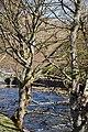 Beddgelert , Afon Glaslyn - geograph.org.uk - 1710936.jpg