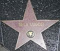 Bela Lugosi star on HWF.JPG