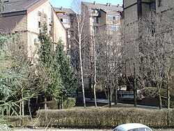 Cerak Vinogradi Wikipedia