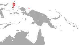 Biak Roundleaf Bat area.png