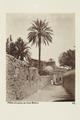 Bild från familjen von Hallwyls resa genom Algeriet och Tunisien, 1889-1890 - Hallwylska museet - 91889.tif