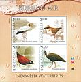 Birds 2014 stampsheet of Indonesia.jpg
