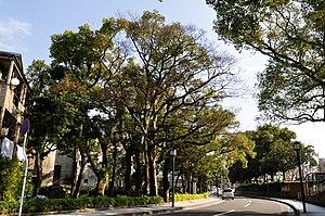 Saigō Takamori - The birthplace at Kajiya-chō, Kagoshima