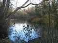 Black Dam Pond - geograph.org.uk - 634538.jpg