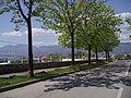 Blecici, Terminal - panoramio.jpg