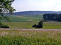 Blick Richtung Münklingen - panoramio.jpg