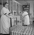 Blood Drying Unit- Processing Blood in the Laboratory, Cambridge, England, UK, 1943 D16761.jpg