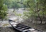 Boat in the Mangroves (15975574064).jpg