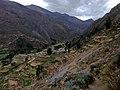 Bolognesi Province, Peru - panoramio (22).jpg